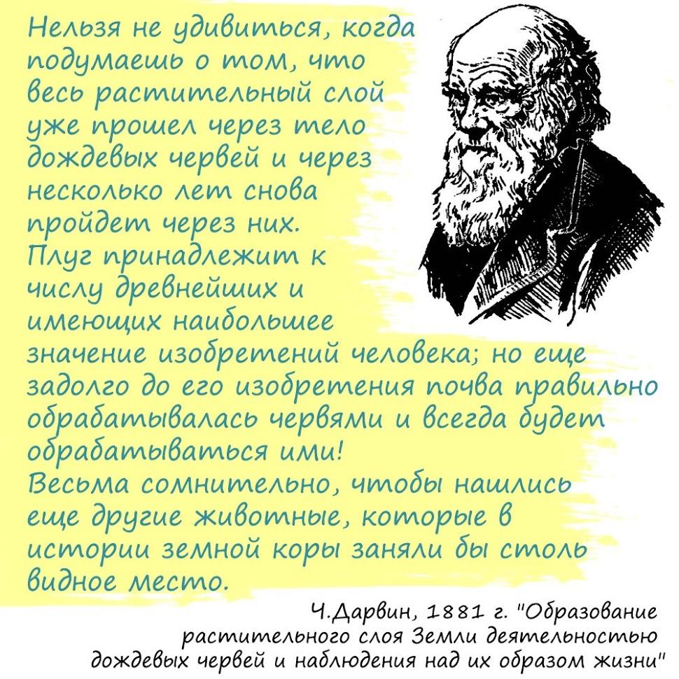 Цитата Дарвина про дождевых червей